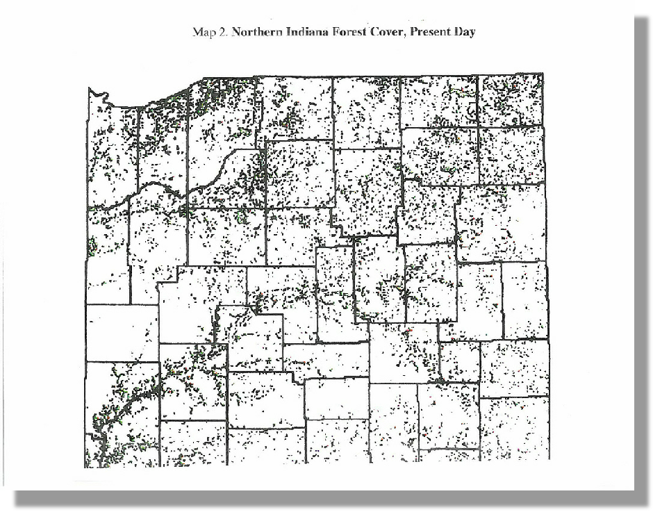 Northern Indiana Forest Cover, Present Day